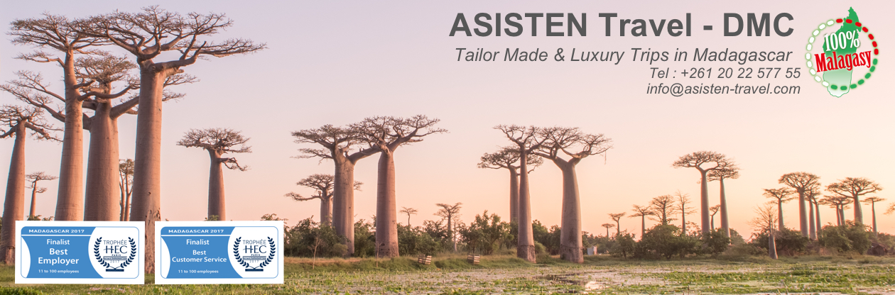 Tailor Made Tours in Madagascar